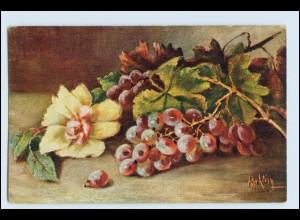 W1E94/ Stilleben Obst Weintrauben am Zweig AK