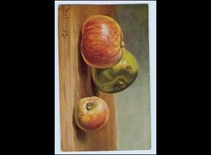 W1D58/ Stilleben Obst Äpfel 1920 AK