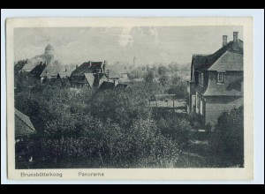 W1T05/ Brunsbüttelkoog Panorama AK 1921
