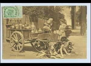 W3D73/ Hundekarren Laitiere Flamande schöne AK Belgien ca.1910