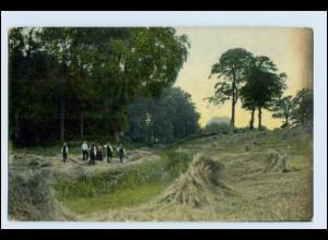 W5Q30/ Auf dem Lande - Heuernte Landwirtschaft AK 1909