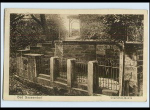 P3E48/ Bad Sassendorf Krs. Soest Charlotten-Quelle Ak 1929