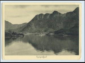 W7X52/ Hamburg-Süd Dampfer Monte Sarmiento Nordlandreisen Norwegen Lyngenfjord