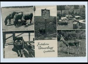P3L05/ Braunlage Fuchsfarm DDR Grenze AK ca.1960