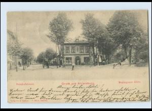 A9039/ Ahrensburg Bahnhofstr. Manhagener Allee AK 1899