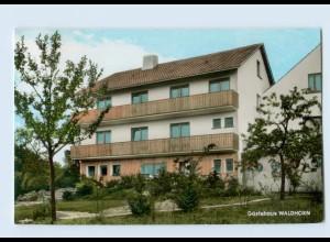 W9A66-7541/ Schwann Neuenbürg Straubenhardt Gasthaus Waldhorn AK