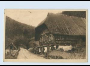 P3V45/ J. Elchlepp AK No. 12 Das Schwarzwaldhaus ca.1912