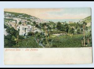 E196/ Barranco Seco - Las Palmas Spanien AK ca.1900