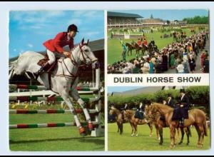 W9Q92/ Dublin Horse Show Pferde Reistport Irland AK 1969 AK