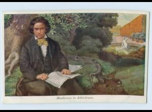 W9R63/ Beethoven in Schönbrunn Künstler AK ca.1912