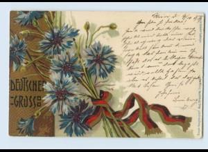 W9V91/ Deutscher Gruß Künstler Litho AK 1899 Patriotik