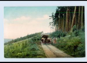 G084/ Landwirtschaft Ochsenfuhrwerk AK ca.1910