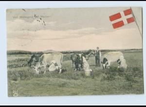 g044/ Ved Middagstid paa Marken Dänemark 1909