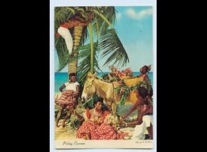 Y8947/ Jamaica Picking Coconuts AK