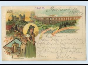 N2264-084./ Mylau Gruß vom Kaiserschloss Brücke Schlosshof Tracht Litho AK 1901