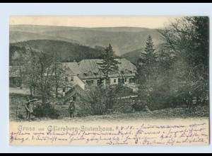 Y921/ Gruß aus Adlersberg-Stutenhaus Thüringen AK 1908