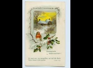 X1H52/ Weihnachten Vogel Singvogel Litho AK 1928