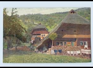 K845/ Schwarzwaldhaus Kirnbachtal Hans Hildenbrandt Nr. 1029 AK ca.1912