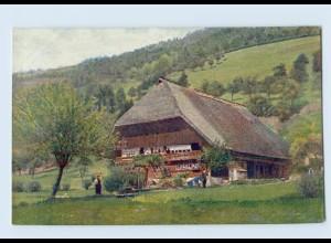 K842/ Schwarzwaldhaus im Kirnbachtal Hans Hildenbrandt Nr. 1030 AK ca.1912