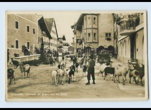 L181-8101/ Mittenwald Heimkehr der Ziegen Foto AK ca.1935