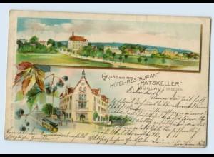 L127-019./ Gruß aus Bühlau b. Dresden Hotel Ratskeller Litho AK 1901