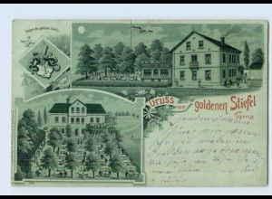 L115-01./ Torna Dresden Gruß vom goldenen Stiefel Litho AK ca.1900