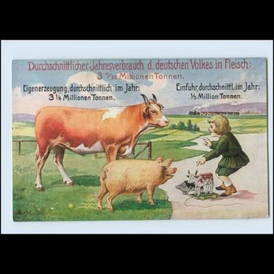 Y337/ Volkswirtschaftliche Wahrheiten Landwirtschaft AK Kuh, Schwein