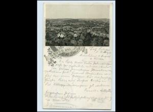 N500-995./ Gruß aus Bad Sulza Panorama Litho AK 1901