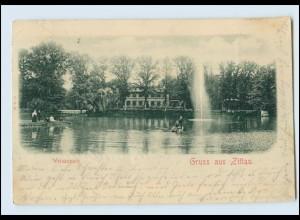 N563-027./ Gruß aus Zittau Weinaupark AK ca.1900