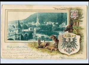 N2877-066./ Naumburg Saale Gruß aus Bad Kösen Litho Prägedruck Wappen AK 1902