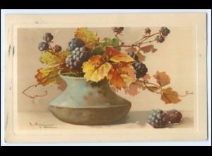N4118/ C.Klein Blumen Herbstbeeren Meissner & Buch Litho Ak 1910