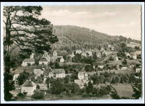 N4853-079./ Ziegenrück Blick vom Schneidersblick 1954 AK