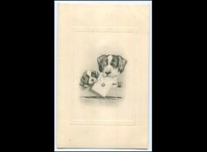 Y1721/ Hunde mit Briefumschlag 1914 AK