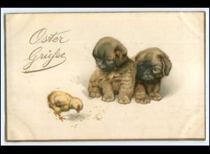 Y1717/ Ostergrüße Hundewelpen und Küken 1920 Litho AK