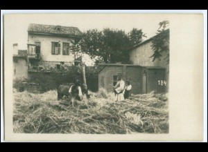 N7881/ Balkan Serbien Bauern Foto AK ca.1915