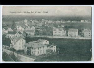 N8467/ Dresden Bühlau AK ca.1920
