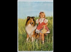 Y2693/ Mädchen mit Hund Collie schöne AK ca.1965