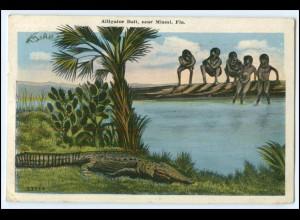 Y2925/ Alligator Balt Miami Florida USA AK Krokodil 1929