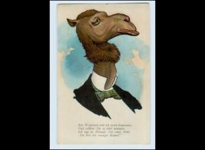 Y3052/ menschliches Kamel Humor Litho AK ca.1910