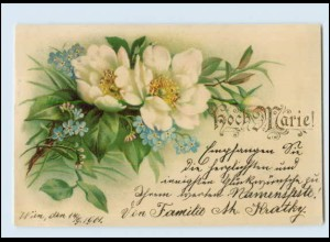 N9674/ Namen Litho AK Hoch Marie ! 1901