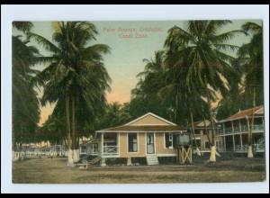 N9805/ Cristobal Palm Avenue, Canal Zone Panama AK ca.1910