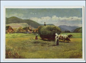 Y3248/ Heuernte im Schwarzwald H. Hoffmann AK ca.1940 N. 0024