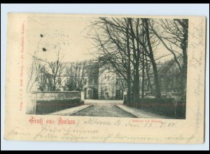 Y4055/ Husum Schloss 1901 AK