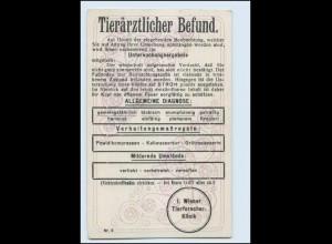 Y4915/ Tierärztlicher Befund Tierarzt Humor AK ca.1912