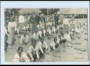 T4162/ Colombo Pulmbago preperation Ceylon AK ca.1910