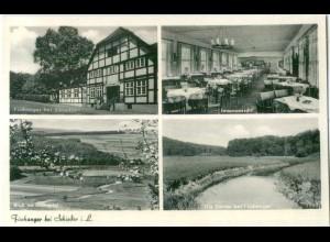 Y5488/ Fischanger bei Schieder AK ca.1950
