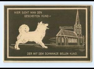 T5218-2150/ Buxtehude schöne AK ca.1912