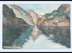 Y5747/ Sognefjord Norwewgen Künstler AK ca.1912
