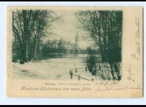 T5861-19./ Schwerin Schloß vom Greenhouse gesehen 1900 AK