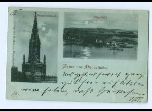 T6401/ GRuß aus Düppelhöhe Nordschleswig Mondschein AK 1899